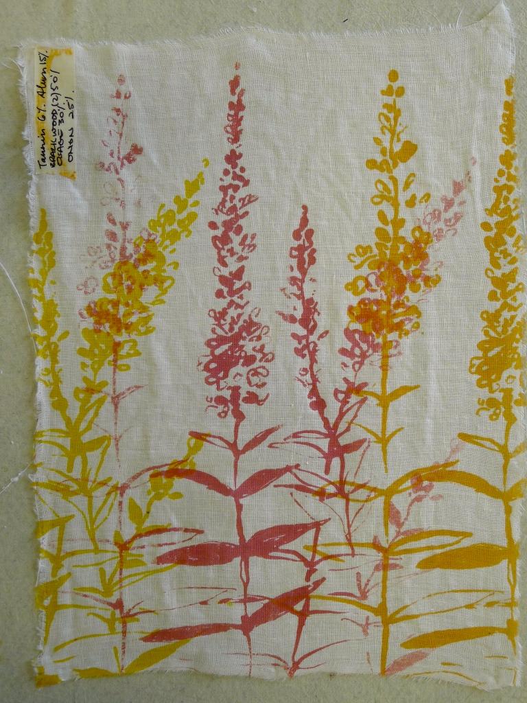 natural dye print II